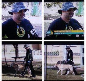 Dog Walker e Pet Sit...