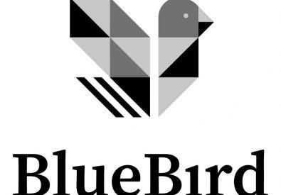 Bluebird – Rel...