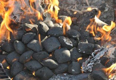 Carvão do Visconde