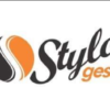 Stylo Gesso