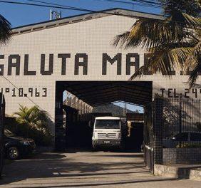 Galuta Madeiras