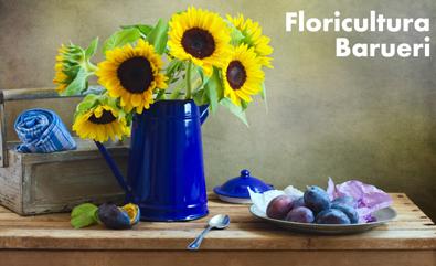 Floricultura online ...