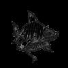 Shark Liercer