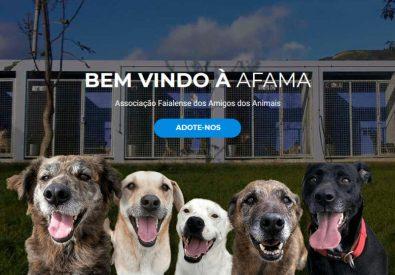 AFAMA – Associação Faialense dos Amigos dos Animais
