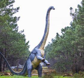Dino Parque – ...